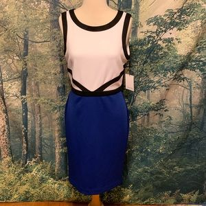 Calvin Klein Dress - New With Tags